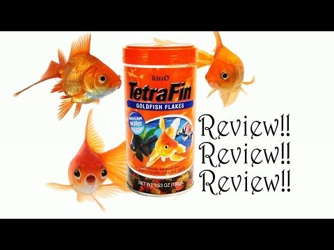 Goldfish Corner #7-Product Review:TetraFin Goldfish Flakes