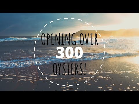 Opening Over 300