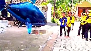 balon gas mainan anak   balon karakter hiu   qyla bermain air swimmer shark