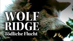 Wolf Ridge - Tödliche Flucht (kostenlose Horror Filme, Thriller Filme, auf deutsch)