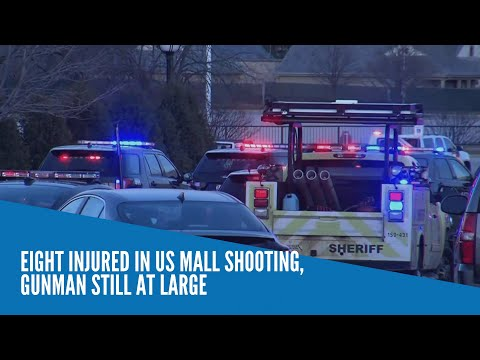 Eight injured in US mall shooting, gunman still at large