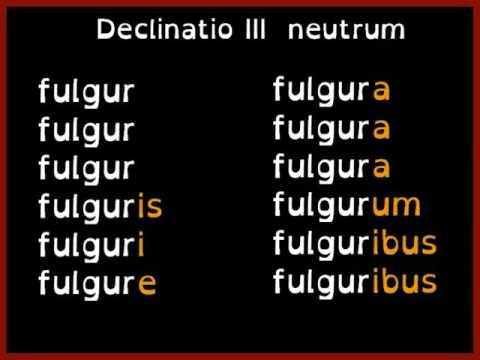 Fortunam cape (Get lucky) _ chanson des déclinaisons / declension songde YouTube · Durée:  2 minutes 57 secondes