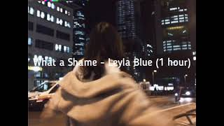 What a Shame - Leyla Blue (1 HOUR)