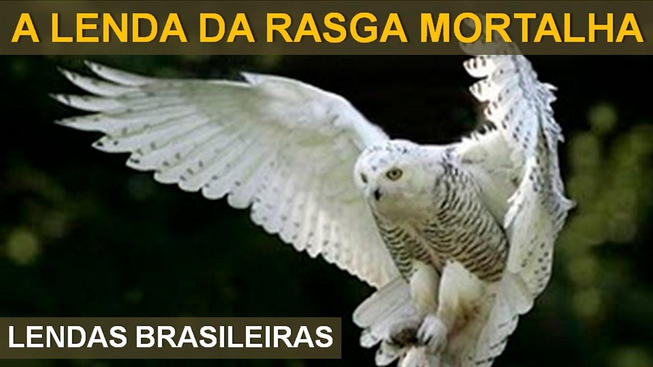 Download A MISTERIOSA LENDA DA RASGA MORTALHA - LENDAS BRASILEIRAS