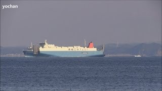 Ro-ro Cargo Ship: SUNFLOWER TOKYO (Owner: MOL Ferry Co., Ltd. Flag: JAPAN, IMO: 9284221) Underway