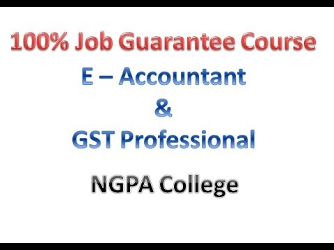 Job Guarantee E Accountant & GST Course - NGPA College Delhi
