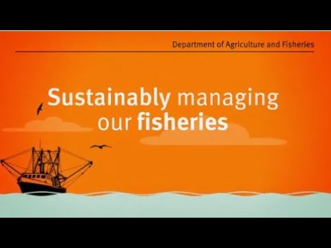 Sustainably Managing Our Fisheries