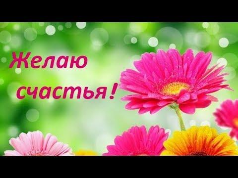 Желаю счастья! доброе пожелание.