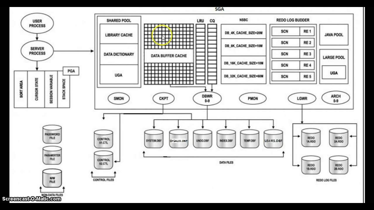 Database Architecture Diagram Muscle Dorsal Oracle 10g Explanation - Youtube