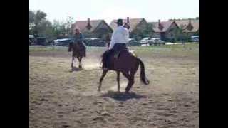 XIII. szigetközi lovastalálkozó, Halászi 2013. 08.16-18.