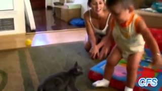 Коты и дети исполняют