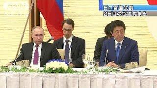 日ロ首脳会談2日目の協議が始まりました。会談後には、北方領土での共同...