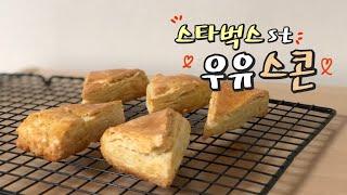 홈베이킹ㅣ우유로 만든 플레인 스콘, 스타벅스 스콘 맛 …