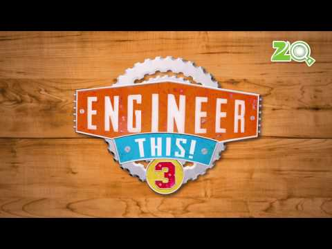 Engineer This! - Jhoomar Ball Game and Bowling Board Game