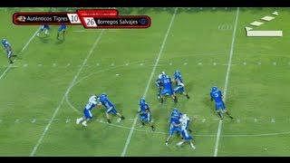 Highlights Scrimmage Autenticos Tigres UANL vs Borregos Tec MTY 16-Ago-2013