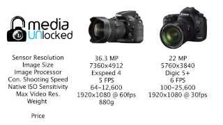 review nikon d810 vs 5d mark iii