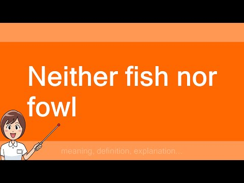 Neither Fish Nor Fowl