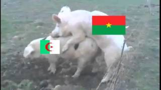 Burkina algerie. 3-2