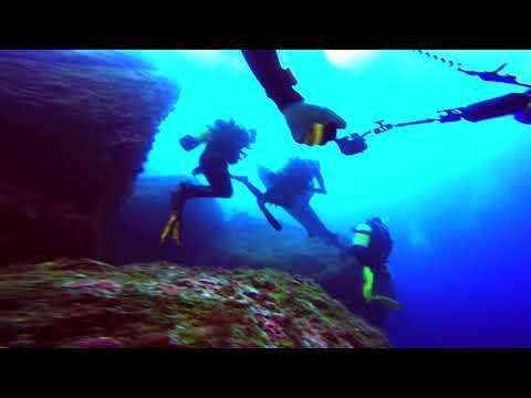 Dive Safari Cocos Island Sept 2017