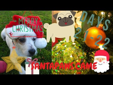 Vlogmas Day 21- 22 **Santapaws Came!!**