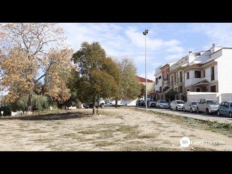 """VÍDEO: Purificación Joyera asegura que la nueva sede judicial de Lucena tiene un carácter """"preferente"""" para la Junta"""