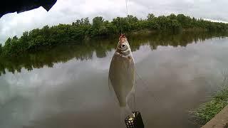 Насосная в дождь рыбалка на реке Дон село Николаевка