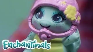 Enchantimals Nederlands | Taylee Schildpad en Bree Konijn gaan naar een Enchantimals wedstrijd