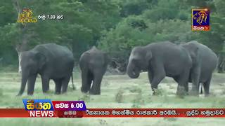 Siyatha TV News 06.00 PM - 20-04-2018 Thumbnail