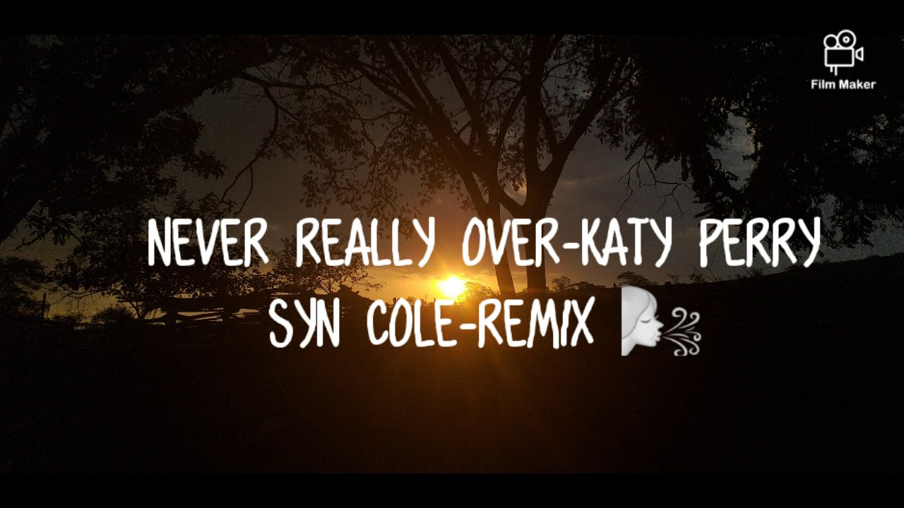 Download NEVER REALLY OVER - KATY PERRY_SYN COLE (REMIX)