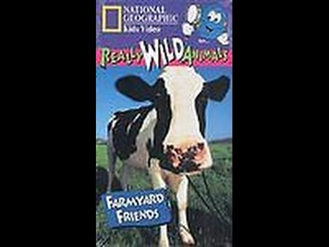 Opening To Really Wild Animals!Farmyard Friends 1997 VHS