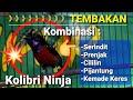 Kolibri Ninja Gacor Full Tembakan Cililin Prenjak Pijantung Kemade Serindit  Mp3 - Mp4 Download