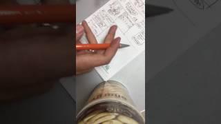 NL internetional Как заработать деньги в НЛ