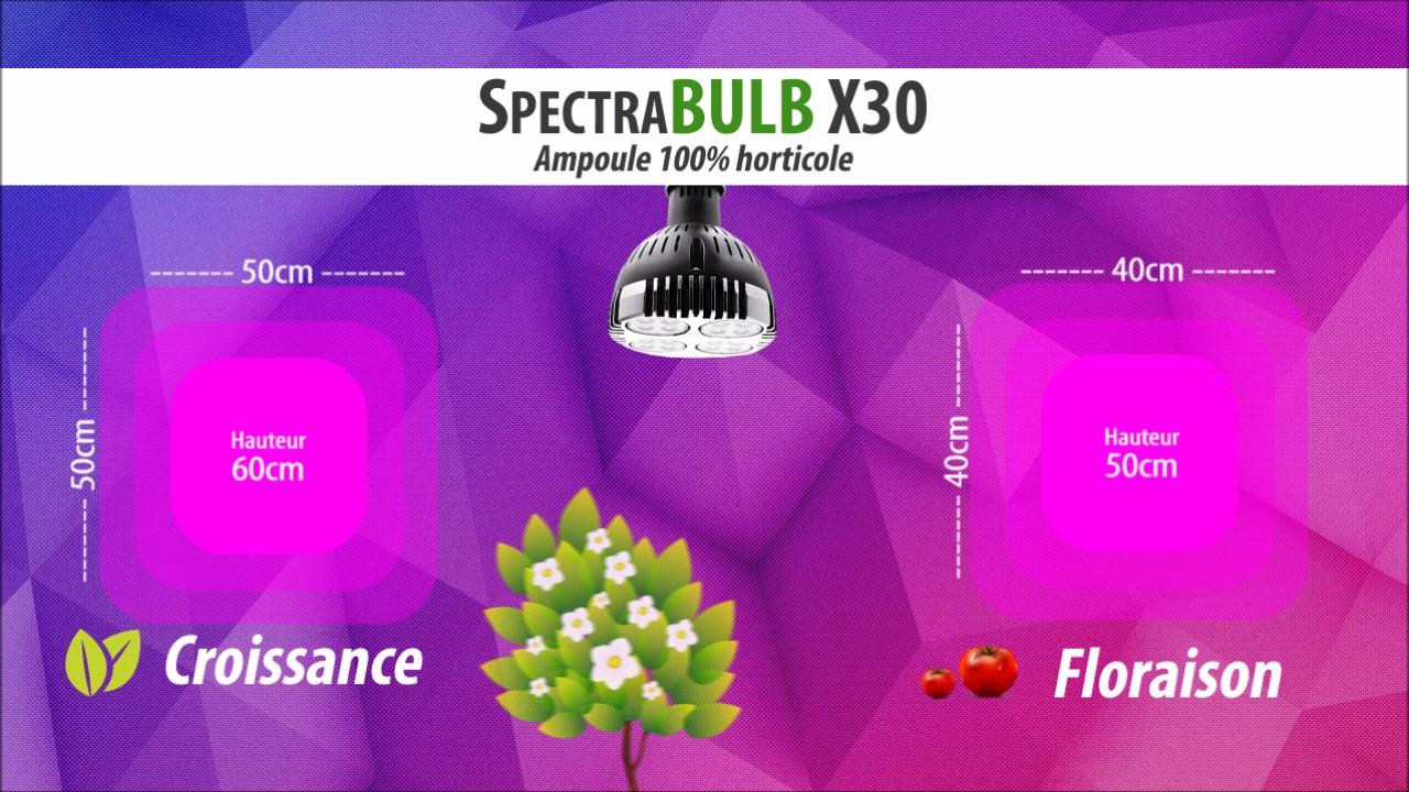 Spectrabulb x30 ampoule horticole led 30w croissance for Cannabis floraison interieur