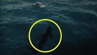 megalodon sighting videos, megalodon sighting clips - clipfail com