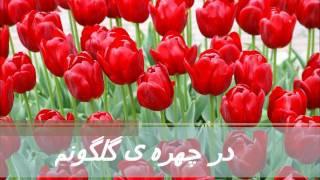 Man Lala e Azadam من لاله ی آزادم