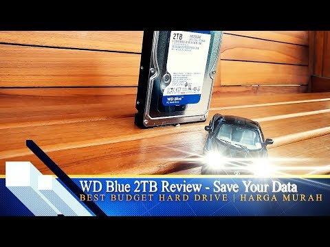 Review Western Digital Blue 2TB Hard Drive - Best Budget | Harga Murah