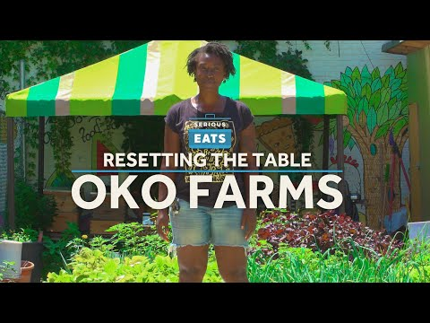 NYC's Biggest Outdoor Aquaponic Farm | Serious Eats