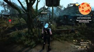 Ведьмак 3: Дикая охота Прохождение [53] Таинственные следы
