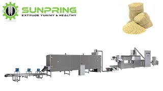 Artificial rice making machine extruder | SunPring®