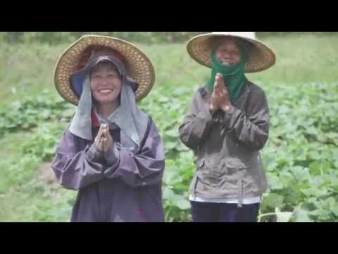 Nature Farming With EM In Thailand