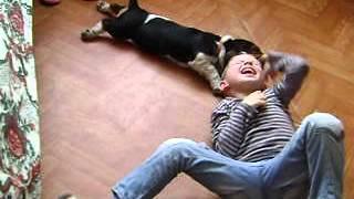 Басет поборол непослушного ребенка