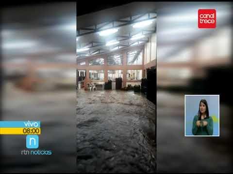 Corresponsal Carmen Picado, Sur Noticias, Canal 14 PZ