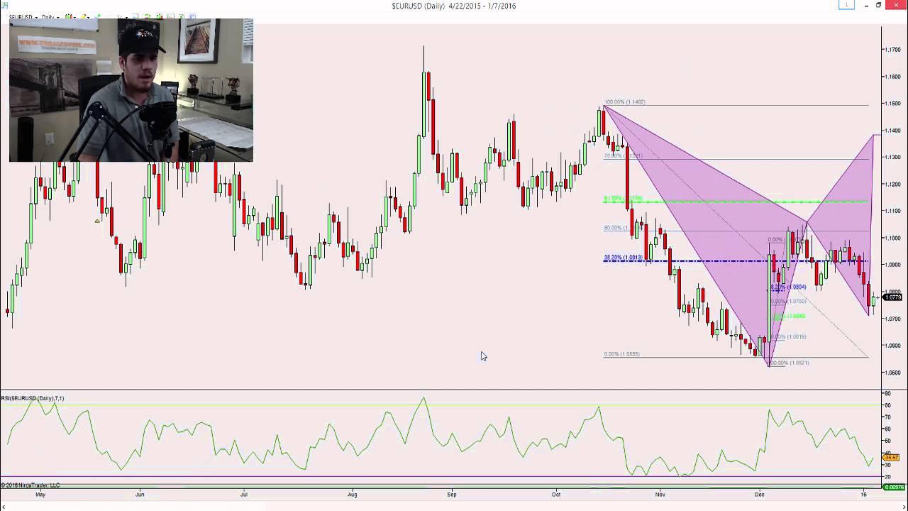 Harmonic forex trading