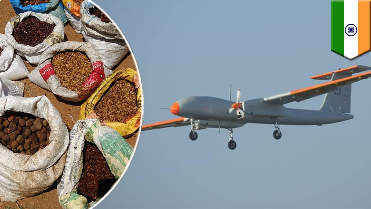Drone seed planting: Indian scientists use seed-bombing to plant Bangalore  forest - TomoNews