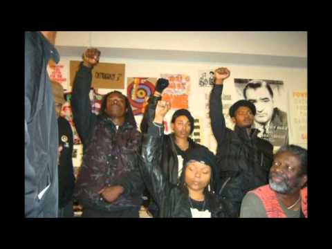 Black Panthers & Anarchism Panel - part 1