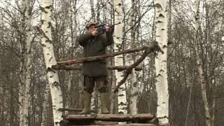 Охота с Леонидом Костюковым. Загонная охота на лося в Ярославской области. часть 1