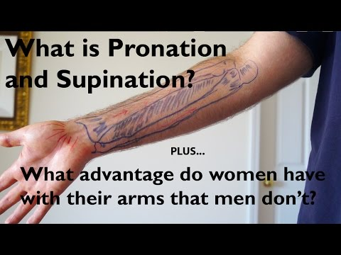What Is Pronation And Supination Of The Forearm?