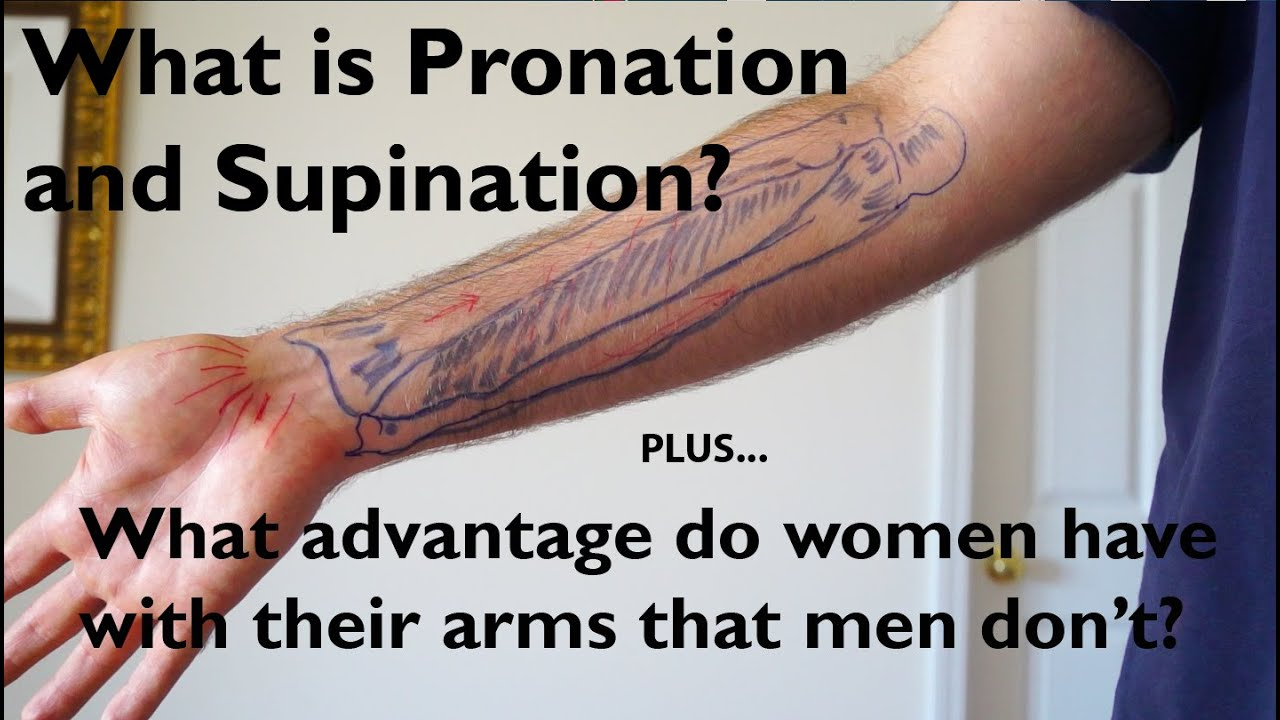 ca0757b0462 What is Pronation and Supination of the Forearm? - YouTube