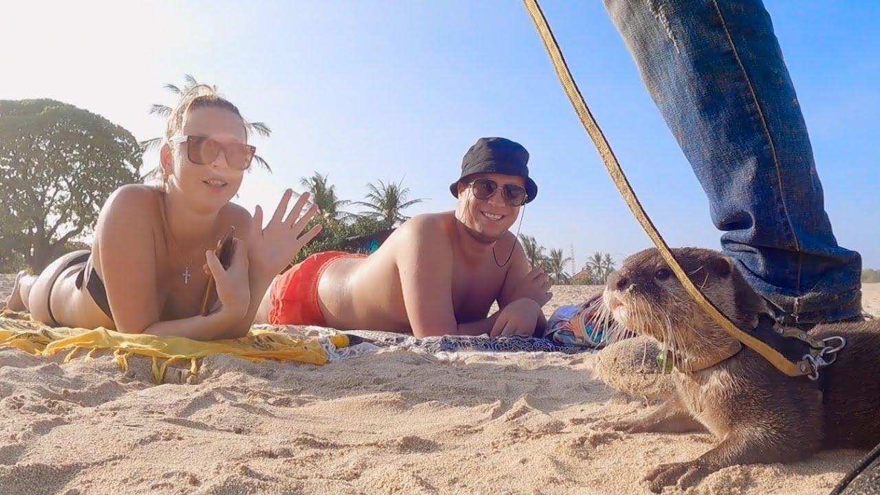 사람들에게 사랑받아서 사람이 너무 좋은 수달|Otter Who is Loved by People and Loves People so much.