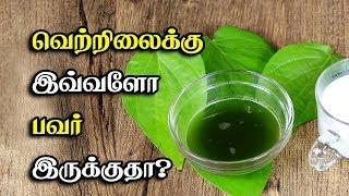 வெற்றிலைக்கு இவ்ளோ பவர் இருக்குதா? Betel Leaves Benefits | Vetrilai Tamil Health Tips